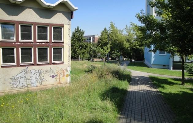 Jenalog: Keine Rasenpflege um Sporthalle Schrödingerstraße