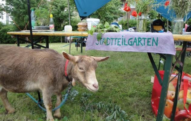 Sommerfest & Stadtteilgarten