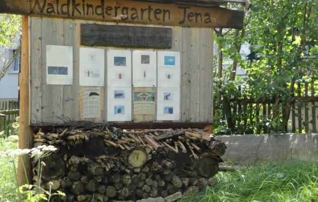 Die Waldkinder sind zurück in Winzerla