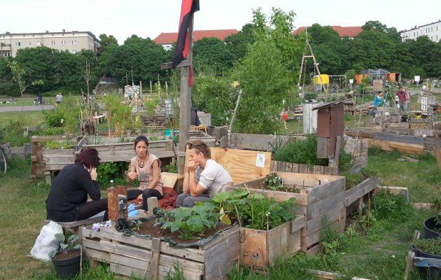 """Blick über den Tellerrand – """"Stadtgärtnern"""" in Berlin"""