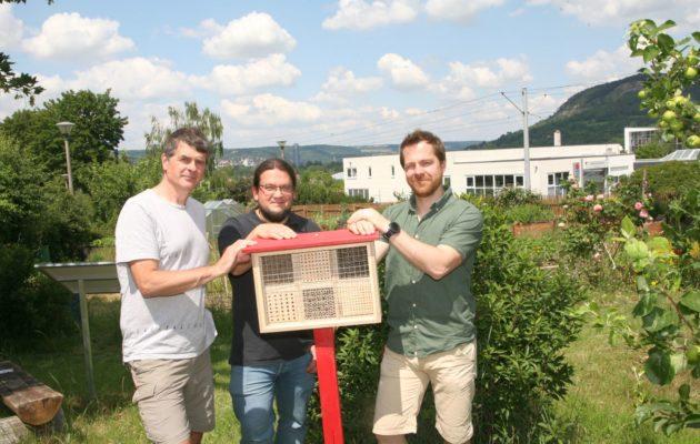 Insektenhotels an den Stadtteilgarten gespendet