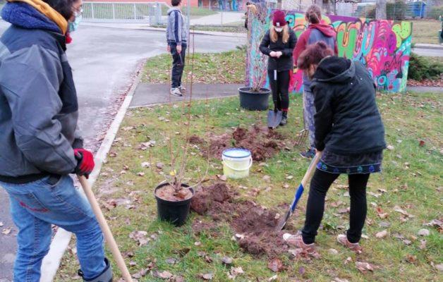 Pflanzaktion mit Jugendzentrum Hugo und Pfadfinder*innen Jena